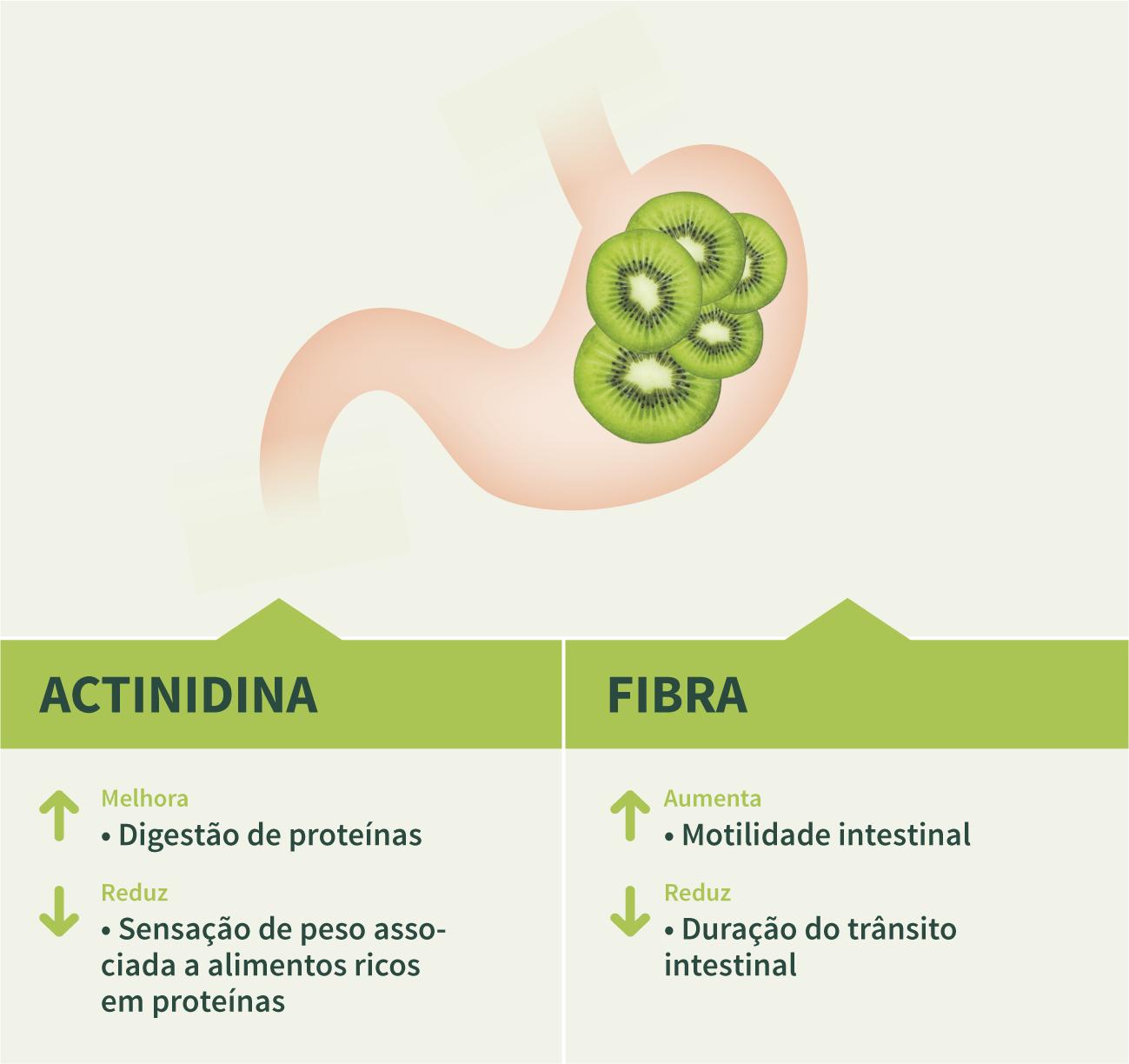 salud_digestiva_quivi